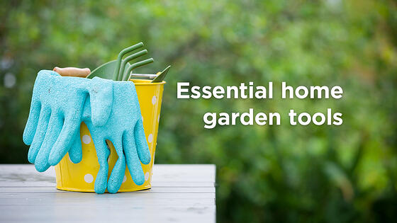Top 6 Essential Home Garden Tools to Make Your Life Easier