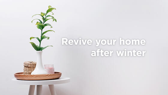 4 Super Easy Ways to Revive Your Home After Winter