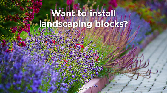A New Homeowner's How-To Advice on Installing Landscape Edging Blocks
